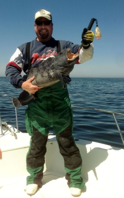 Elusive Wolfish caught and released on the Reel Big Fish